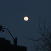 "March ""pink"" full Moon"