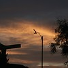Orange clouds behind anemometer before dawn