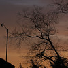 Anemometer in hazing dawn clouds