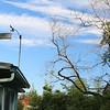 High clouds around weather instruments
