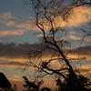 Dawn cloud effects around anemometer