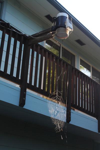 Spider web on weather station bracket