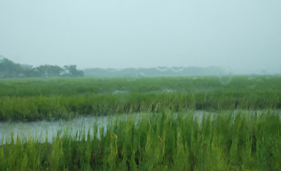 Rain on the window looking at the marsh like a waterpainting made by Mother Nature