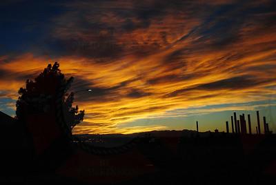 City's Sunset