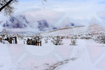 Whiteout in Southern Nevada 3