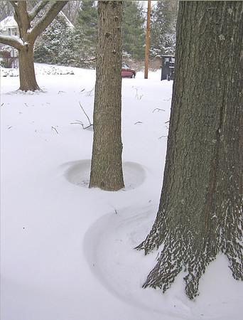 Winter 2010, 2011