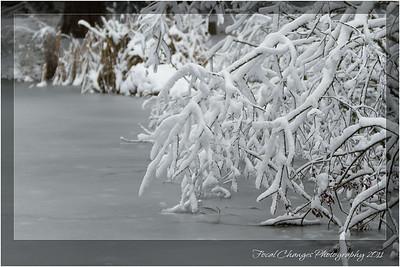 2012_01_18_SnowStorm-3063