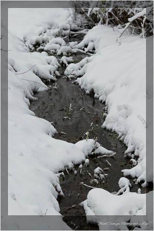 2012_01_18_SnowStorm-3069