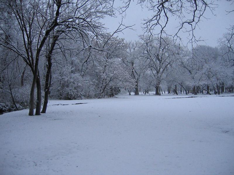 "<a href=""http://xenogere.com/the-snow-episode-iv/"" title=""The Snow: Episode IV"">Blog entry</a>"