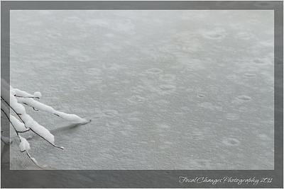 2012_01_18_SnowStorm-3065