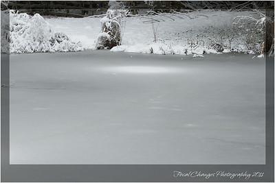 2012_01_18_SnowStorm-3064