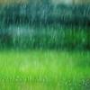 Short rain trails...