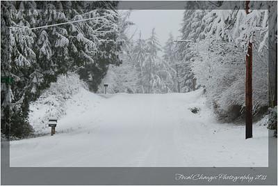 2012_01_18_SnowStorm-3026