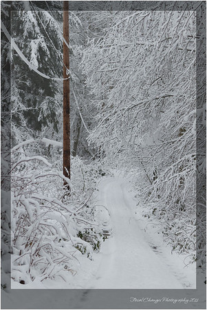 2012_01_18_SnowStorm-3022