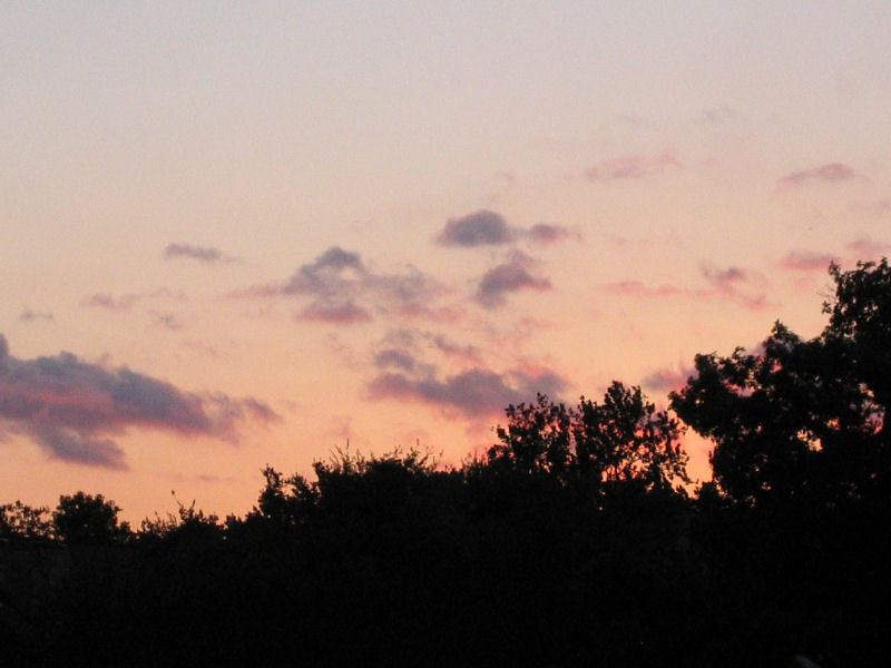 """<a href=""""http://xenogere.com/the-sunset-lives-just-clear-of-yonder-trees/"""" title=""""The sunset lives just clear of yonder trees"""">Blog entry</a>"""
