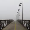 """<a href=""""http://xenogere.com/2008/10/10/bridge-to-neverland/"""">Blog entry</a>"""