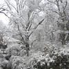 "<a href=""http://xenogere.com/2004-valentines-day-snow/"" title=""2004 Valentine's Day snow!"">Blog entry</a>"