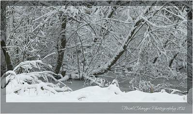 2012_01_18_SnowStorm-2990