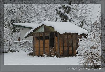 2012_01_18_SnowStorm-3032