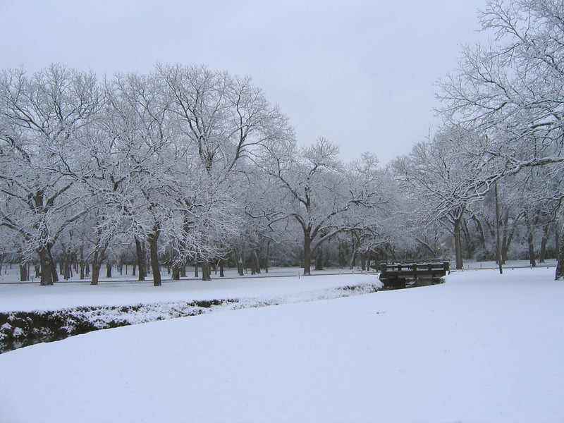 "<a href=""http://xenogere.com/the-snow-episode-ii/"" title=""The Snow: Episode II"">Blog entry</a>"