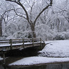 """<a href=""""http://xenogere.com/2004-valentines-day-snow/"""" title=""""2004 Valentine's Day snow!"""">Blog entry</a>"""