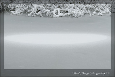 2012_01_18_SnowStorm-3027