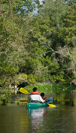 Kayaking Wekiva Run