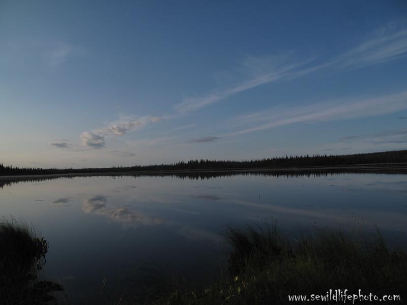 Lake Marie. Yukon Flats, AK.