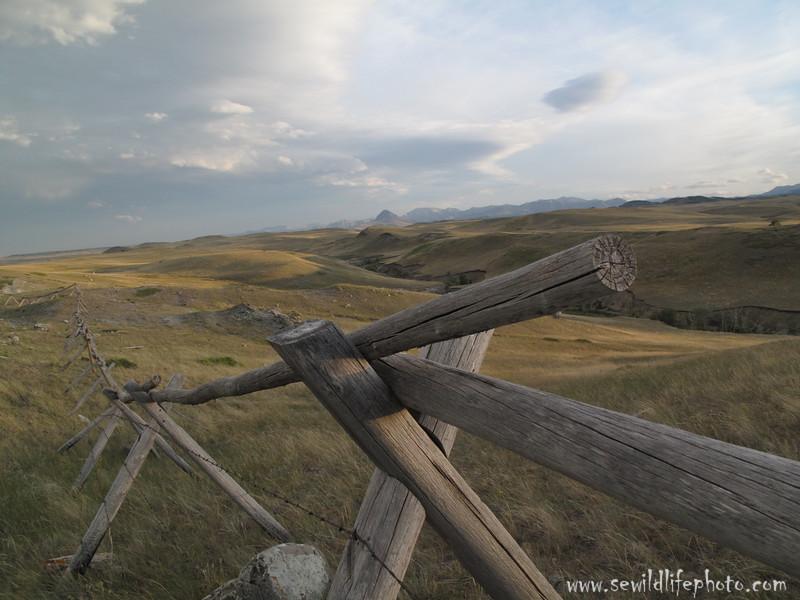 Rocky Mountain Front. Montana.