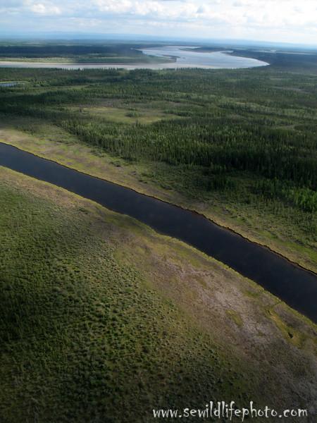 Channel of the Yukon River. Yukon Flats National Wildlife Refuge, Alaska.