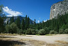 IMG_1593<br /> Half Dome and dried up Mirror lake.