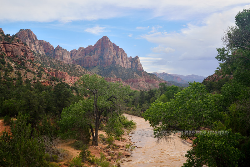 """UT-ZNP2019.6.17#065. Another iconic image of """"The Watchman"""", looking down Virgin Creek. Zion National Park, Utah."""