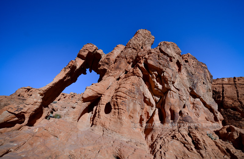 NV-VOF2019.10.12#1372.2. Elephant Rock Arch in the Valley of Fire Nevada.