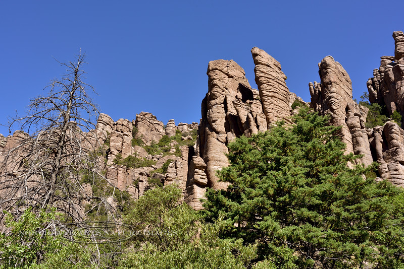 AZ-CNM2018.5.5#701. Organ Pipe formation. Chiricahua Monument Arizona.