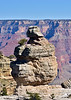 AZ-GCNP2020.1.14#6991.2. Duck on a Rock. Grand Canyon Park Arizona.