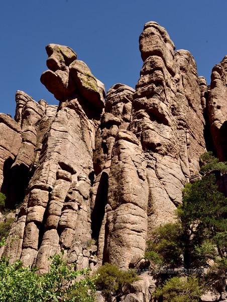 AZ-CNM2018.5.5#710.  Part of the Organ Pipe formation. Chiricahua Monument Arizona.