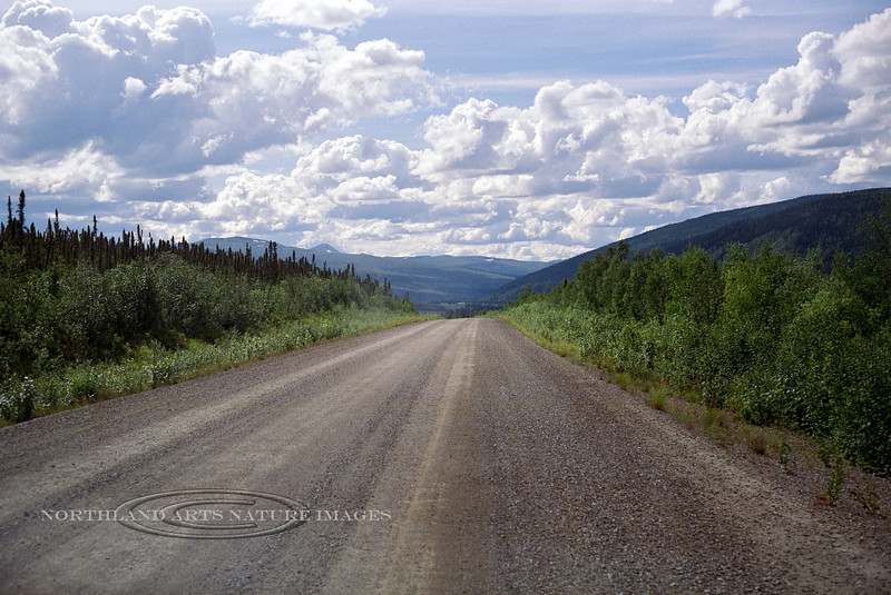 AK-Shw2000.6.21.1.2. The Steese Highway, route 6 west of Mammoth Creek in Alaska.