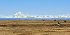 AK-2014.4.22#07. Mount Redoubt Volcano across Cook Inlet viewed from the Kenai National Wildlife Refuge in Alaska.