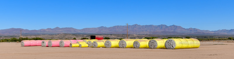 AZ-2018.11.7#023. Cotton Bails back dropped by the Pinoleno Mountains. Viewed from the Old West Highway, Route 70 near Safford Arizona.