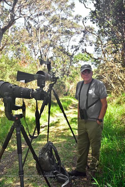HI-2015.2.3#170. Jack Jeffery, Biologist & Master Bird Guide. In the Hakalau Forest Preserve, high on  Mauna Kea Hawai'i.