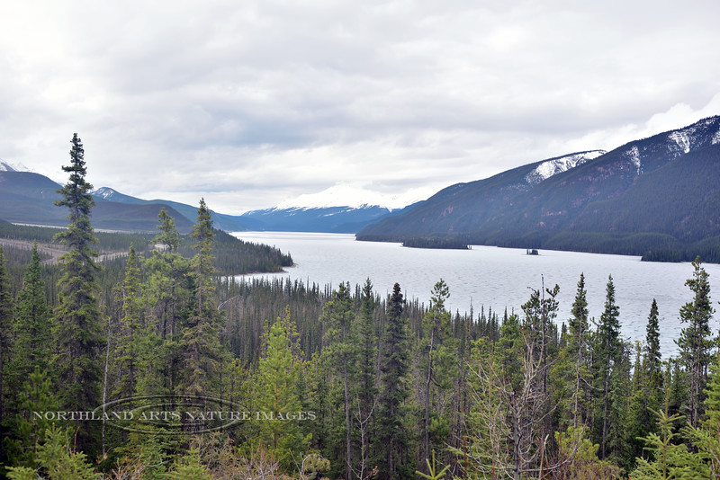 CANBC-2017.5.16#172.2. Muncho Lake viewed from the Alaska Highway. British Columbia Canada. On a clear day is a brilliant Jade green.