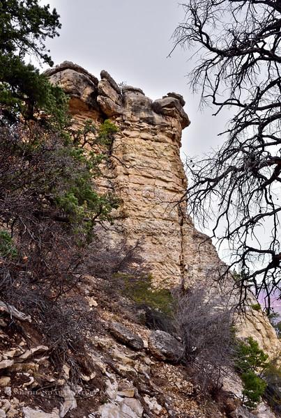 AZ-GCNP2017.11.29#315. A view in Grand Canyon Park, Arizona.