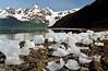 AK-2001.6.9#13.4. Barry Arm, Prince William Sound Alaska.