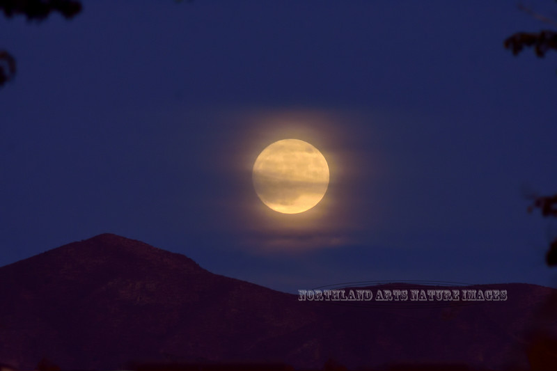 AZ-2020.10.30#5650.2. The moon rising over Mingus Mountain in the Black Hills, viewed from Prescott Valley the night before the Halloween Full Blue Moon. Arizona.