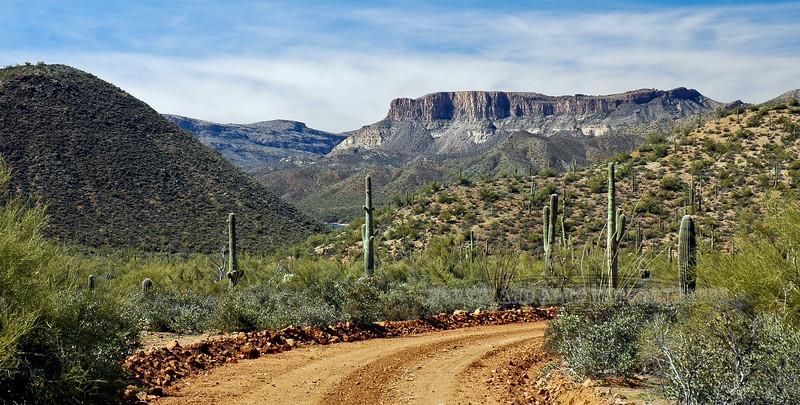 AZ-AT2007.3.4#0014. A view driving the Apache Trail, Arizona.