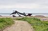 AK-SPns-2015.6.24#114.3. Gold mining on a Norton Sound beach off the Nome to Council road, Seward Peninsula Alaska.