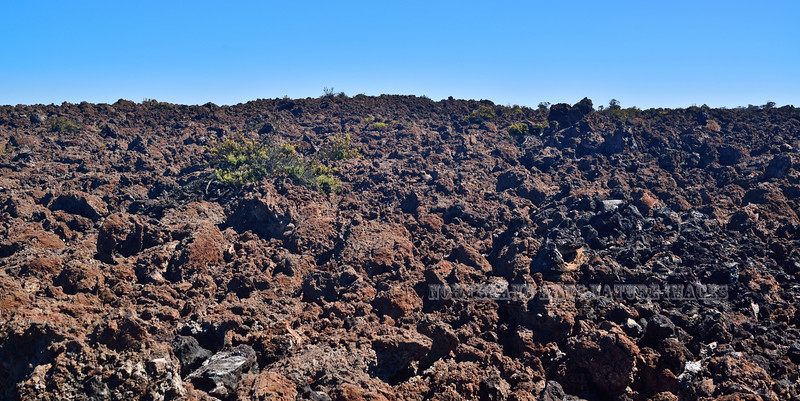 HI-2015.2.2#083. An old lava flow on Mauna Loa Hawai'i.