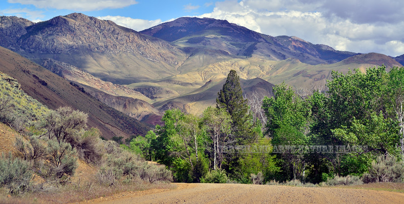 ID-2015.5.25#279. Amazing scenery viewed from the Bayhorse Canyon road, near Bayhorse Idaho.