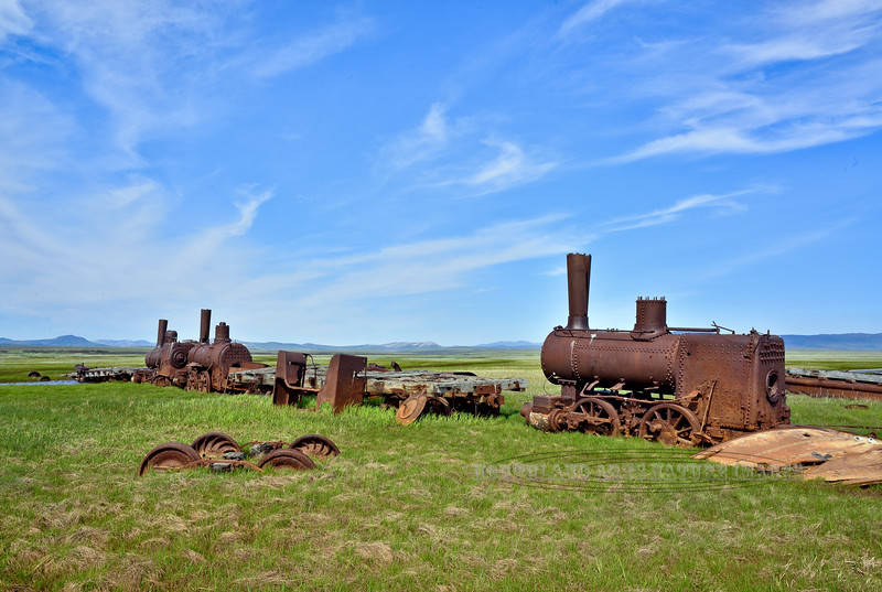 """AK-SPst-2015.6.24#320. Commonly known as """"The Last Train to Nowhere"""". Viewed from the Nome to Council road between Safety and Solomon, Alaska. In 2001 the trains and flat cars and everything else you see here were added to the Nat. Register of Historic Places."""