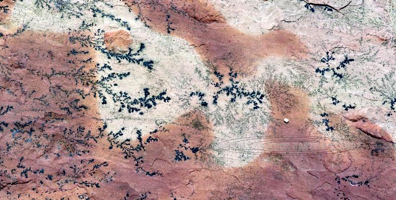 AZ-PFNP, Painted Desert. Dendrites in sandstone, Arizona. #1011.891.